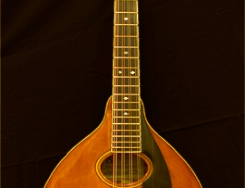 Mandocello For Paul Nowinski and Louis Resto