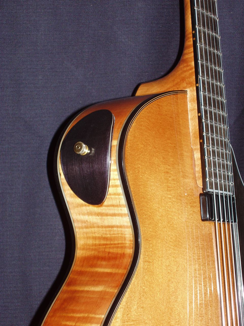 Christopher Woitach Guitar