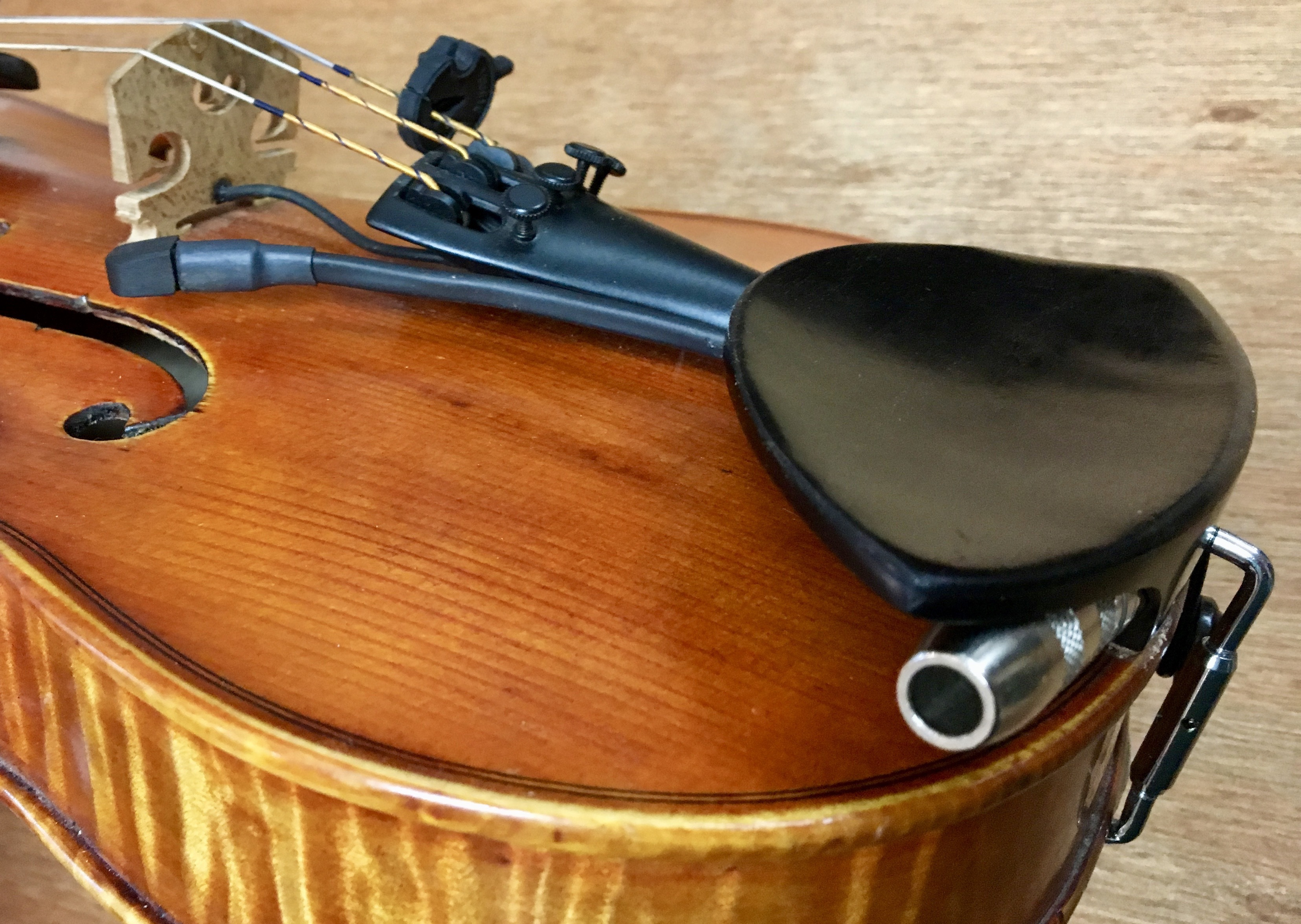 Ithaca Stringed Instruments